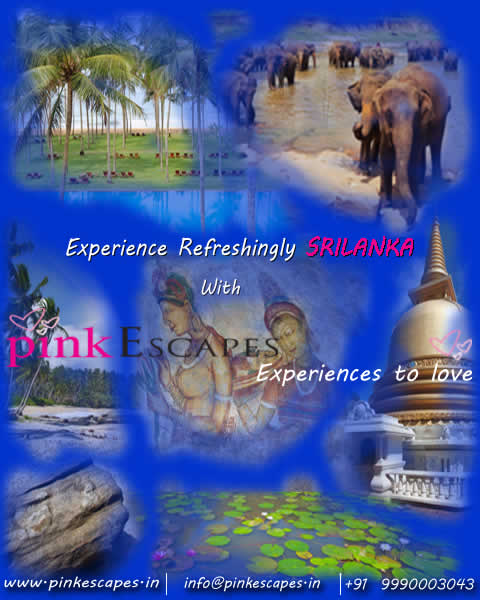 click here for PINK ESCAPES Sri Lanka