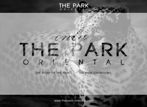 click here for THE PARK